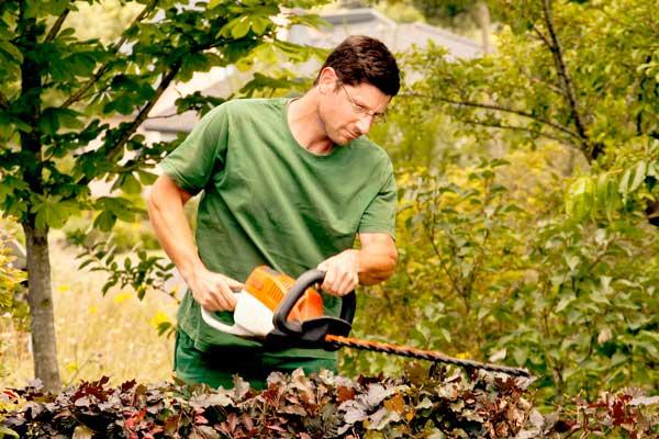 Landschaftsgärtner in Aktion, abgelichtet von PM Fotostudio