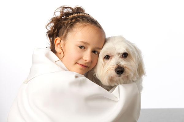 Hunde sind die besten Freunde des Menschen, abgelichtet von PM Studios
