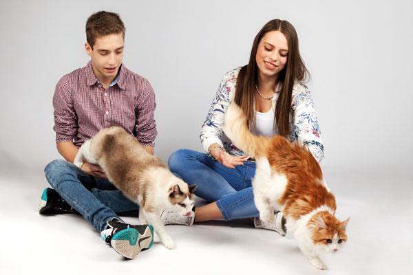 Mit den Katzen im PM Fotostudio